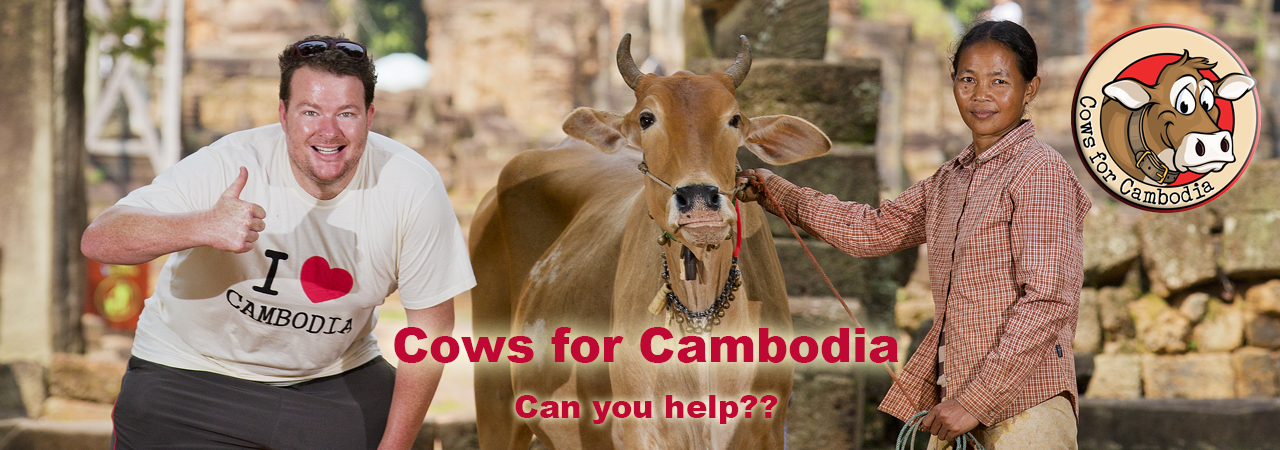 cows-for-cambodia-fp